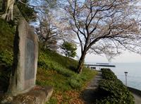 城下公園の写真・動画_image_191976