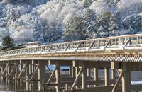 渡月橋の写真・動画_image_698736