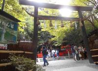 野宮神社の写真・動画_image_258834