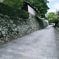 滋賀院門跡庭園の写真・動画_image_80706