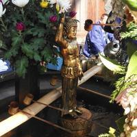 東大寺の写真・動画_image_279663