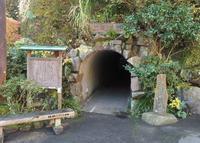 狸福神社の写真・動画_image_20532