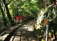 狸福神社の写真・動画_image_20534