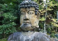 福泉寺の写真・動画_image_20540