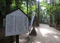 星田妙見宮の写真・動画_image_32202