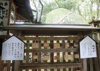 星田妙見宮の写真・動画_image_32204