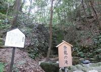 星田妙見宮の写真・動画_image_32206