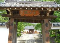 長国寺の写真・動画_image_32334