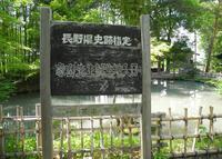 象山神社の写真・動画_image_32353