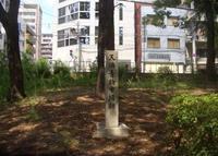 南天満公園の写真・動画_image_32909