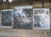 南天満公園の写真・動画_image_32930