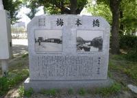 松島公園の写真・動画_image_34296
