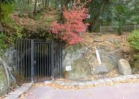 高井田横穴公園の写真・動画_image_35451