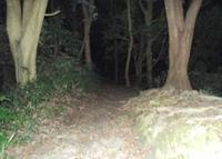 観音崎公園の写真・動画_image_38974