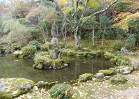 竹林院の写真・動画_image_52577