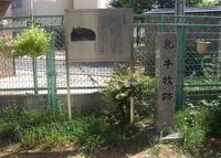 大隅神社の写真・動画_image_74243