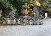 福泉寺の写真・動画_image_127146