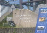 山崎の写真・動画_image_134820
