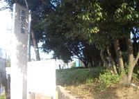長居公園の写真・動画_image_137450
