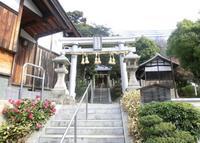 須波麻神社の写真・動画_image_138356