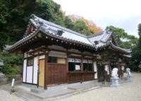 国分神社の写真・動画_image_139149