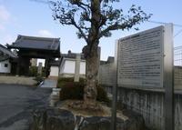 来迎寺の写真・動画_image_140320