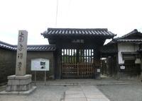 南宗寺の写真・動画_image_162666