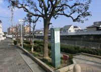 西除川遊歩道の写真・動画_image_175717
