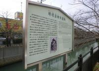堺環濠都市遺跡の写真・動画_image_179072