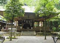 武芸八幡宮の写真・動画_image_180693