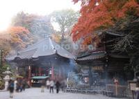 水澤観世音(水澤寺)の写真・動画_image_185071