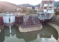 琵琶湖疏水の写真・動画_image_188324