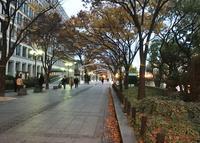 大阪市役所の写真・動画_image_207071