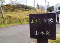 (株)山本園・WITH TEAの写真・動画_image_229429