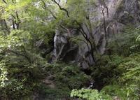 帝釈峡の写真・動画_image_263287