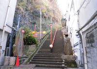 徳寿院の写真・動画_image_288609