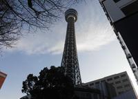 横浜マリンタワーの写真・動画_image_291442