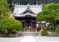 修善寺の写真・動画_image_300479