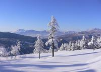 万座温泉スキー場の写真・動画_image_462366