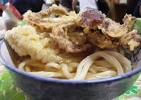 宮川製麺所の写真・動画_image_42212
