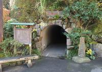 万葉公園の写真・動画_image_46579