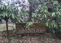 高森田楽保存会の写真・動画_image_71061