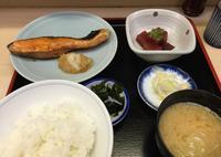 魚竹の写真・動画_image_142671