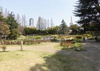 靱公園の写真・動画_image_308759