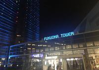 福岡タワーの写真・動画_image_446010