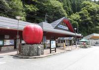道の駅 はがの写真・動画_image_449812