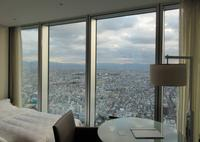 大阪マリオット都ホテルの写真・動画_image_483737