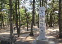 慶野松原の写真・動画_image_505320