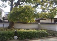鴻池新田会所の写真・動画_image_563564