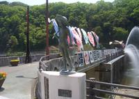 ゆ〜らぎ橋鷺の大噴水の写真・動画_image_711617